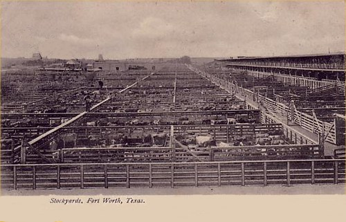 Stockyards - 1907